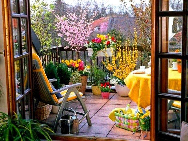 цветы на балконе (26)
