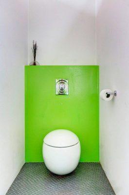 нюансы оформления туалета (4)