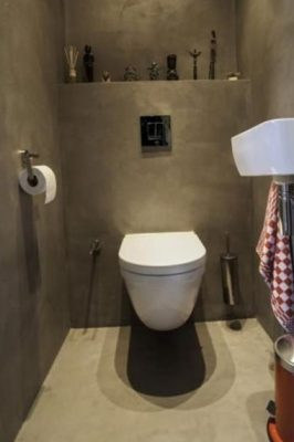 нюансы оформления туалета (8)