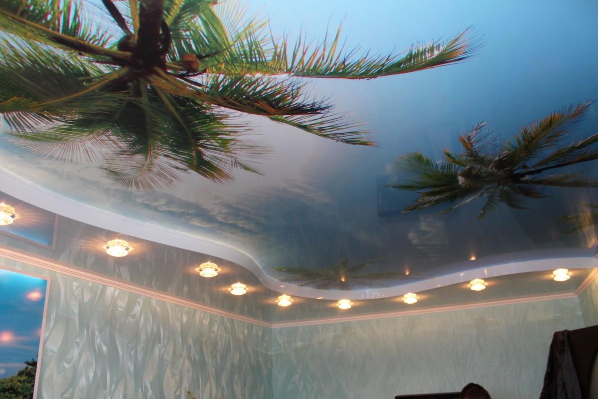пригласили образцы натяжных потолков для зала с фотопечатью легкостью