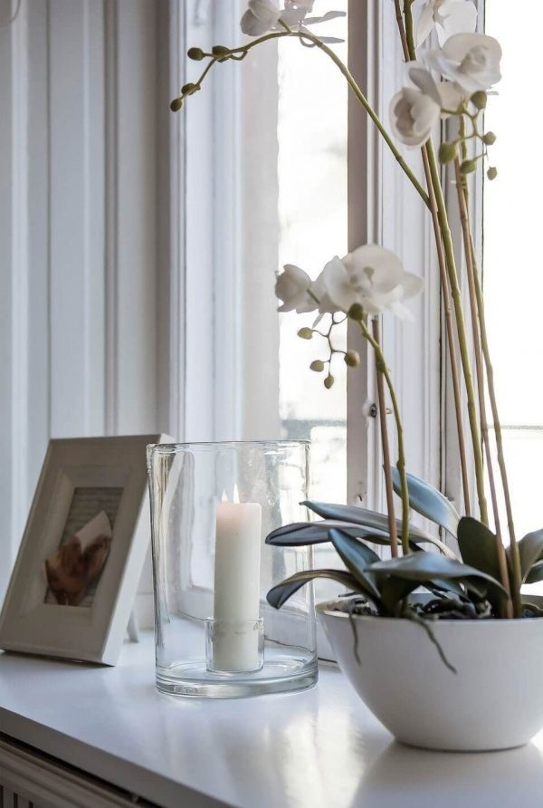 Не вредна ли орхидея для человека: роскошный цветок для души и интерьера