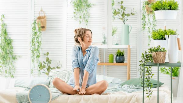 Как улучшить качество сна при помощи комнатных растений?