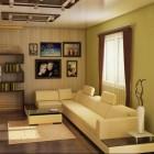 Выбор цвета для маленького зала (4)