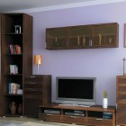 мебель для гостиной модерн (22)